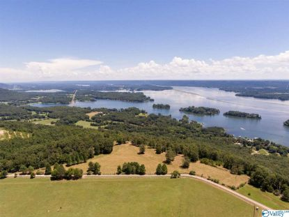 GUFFEY ROAD Scottsboro, AL MLS# 1149049