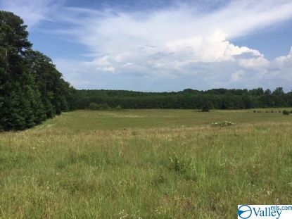 0000 HWY 67 Decatur, AL MLS# 1149174