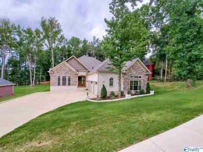 107 BURWELL RIDGE TRAIL Harvest, AL MLS# 1149664