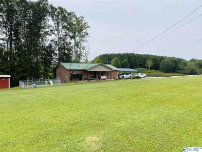 2284 OLD ONEONTA ROAD  Horton, AL MLS# 1153362