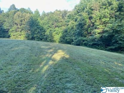11685 GLASS HOLLOW ROAD  Athens, AL MLS# 1155403