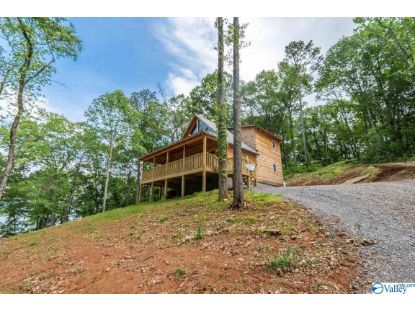 1233 LAKESHORE DRIVE  Langston, AL MLS# 1155474