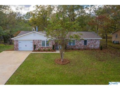 508 Shane Lane  Rainbow City, AL MLS# 1156130