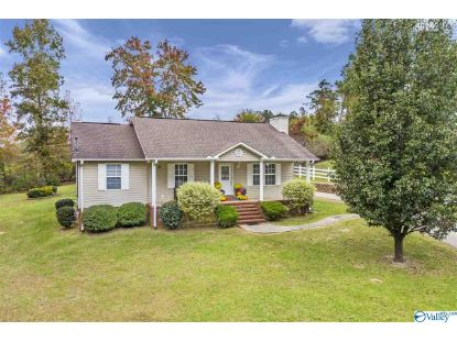 2550 Country Road  Southside, AL MLS# 1156388