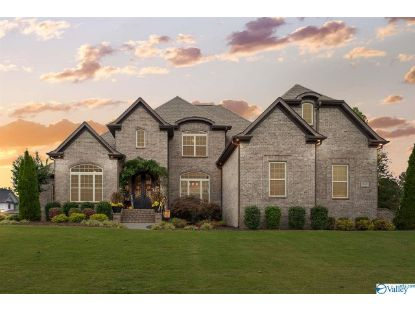16335 Travertine Drive  Athens, AL MLS# 1156561