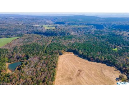000 Al Highway 176  Fort Payne, AL MLS# 1156604