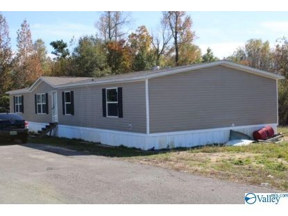 2930 Wills Creek Road  Gadsden, AL MLS# 1156767