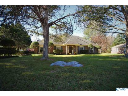 1117 Way Thru The Woods SW Decatur, AL MLS# 1157006