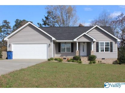 193 Keef Avenue  Rainsville, AL MLS# 1157190