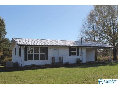 19177 Alabama Highway 75  Henagar, AL MLS# 1157215