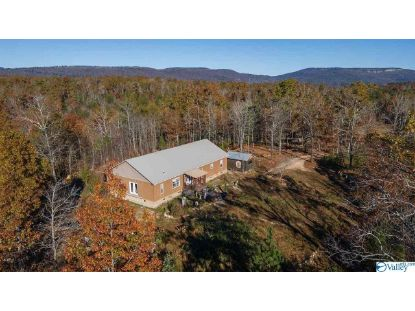 4797 County Road 239  Valley Head, AL MLS# 1157243