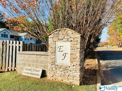 1005 Liberty Drive  Unit 1005 Madison, AL MLS# 1770246