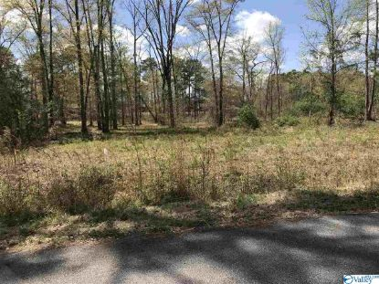 0 Hiawatha Place  Rainbow City, AL MLS# 1770504
