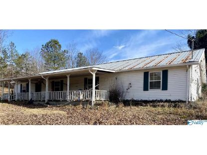 600 County Road 354  Collinsville, AL MLS# 1771779