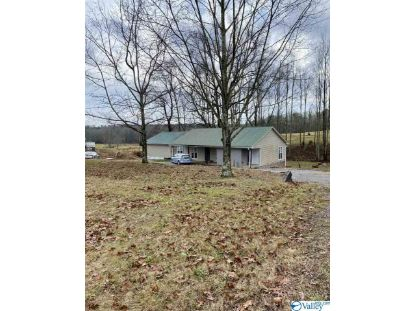 3065 Alabama Highway 40  Henagar, AL MLS# 1771974