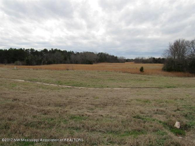 00000 Hwy 302, Red Banks, MS 38661