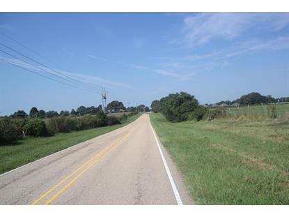 100 S HIGHWAY 51  Senatobia, MS MLS# 305661