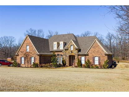 4818 Austin Road, Nesbit, MS