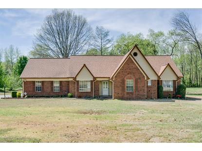 6341 Nellwood Drive Olive Branch, MS MLS# 322253