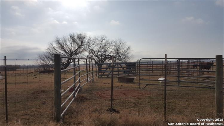 42.9 ACRES CR 314, Floresville, TX 78114