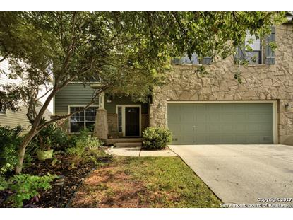 203 WILLOW GROVE DR  San Antonio, TX MLS# 1261369