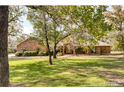 572 ROSE BRANCH DR , La Vernia, TX