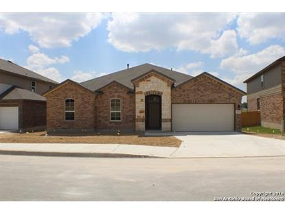 215 ROSE SPOONBILL  San Antonio, TX MLS# 1306598