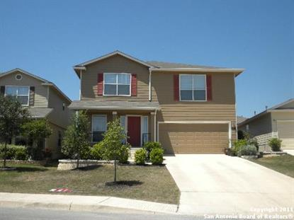 207 COOPERS HAWK , San Antonio, TX
