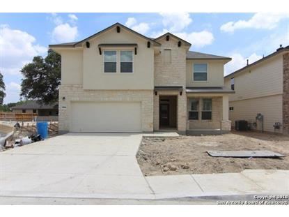 14846 CAVE SWALLOW  San Antonio, TX MLS# 1312367