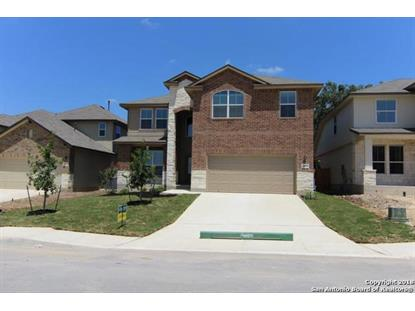 14859 HORNED LARK , San Antonio, TX