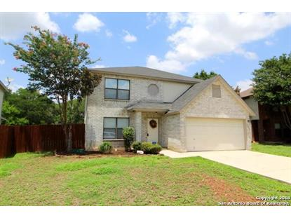 13423 MAGNOLIA BROOK , San Antonio, TX
