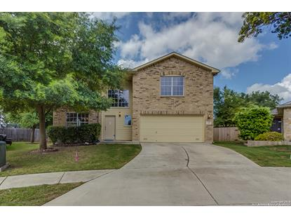 233 HEREFORD ST  Cibolo, TX MLS# 1344044