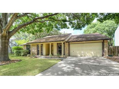 16319 Falcon Hill St  San Antonio, TX MLS# 1346315