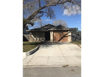 11303 cache Path  San Antonio, TX MLS# 1353328
