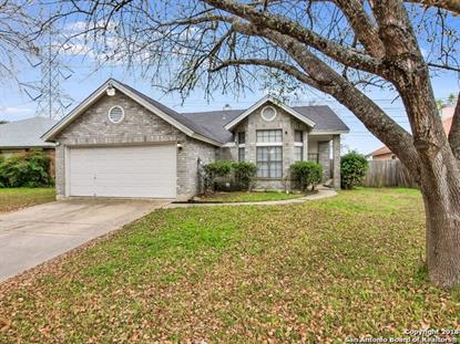 7011 BEECH TRAIL DR  San Antonio, TX MLS# 1353422