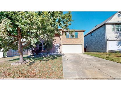 132 Springtree Hollow  Cibolo, TX MLS# 1357260
