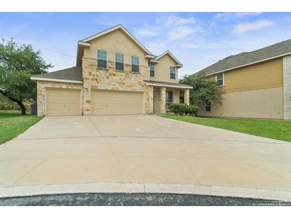 25607 WEIGELA  San Antonio, TX MLS# 1359023