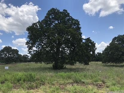 1190 (LOT 1740) Trotter LN  New Braunfels, TX MLS# 1398635