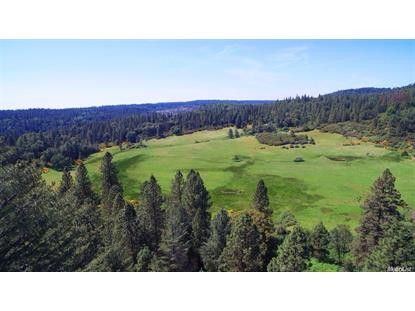 4500 cook ranch road garden valley ca - Garden Valley Ca