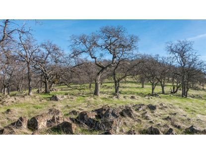 0 120 - Acres  Pilot Hill, CA MLS# 20077039