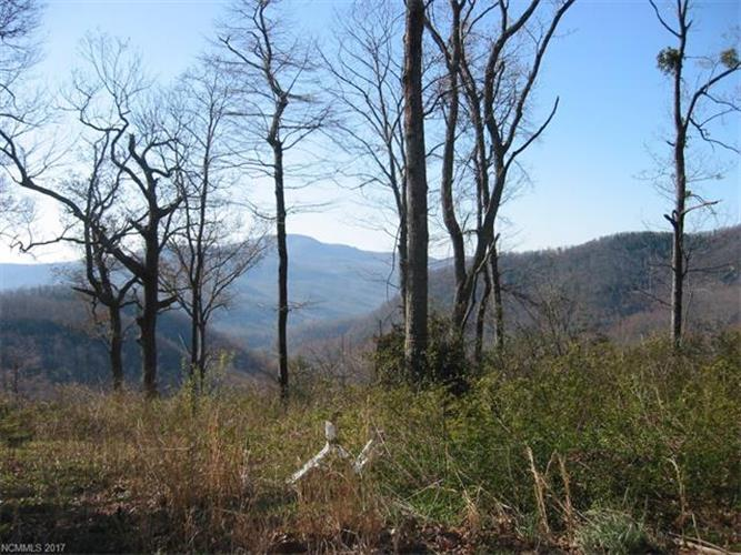 Lot 1 Old Place Bluff Drive, Hendersonville, NC 28791