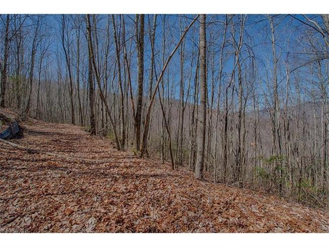 Lot 262 Tote Road, Sylva, NC 28779