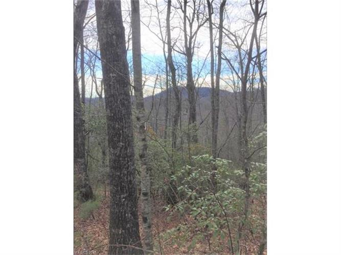 000 Gray Fox Road, Rosman, NC 28772