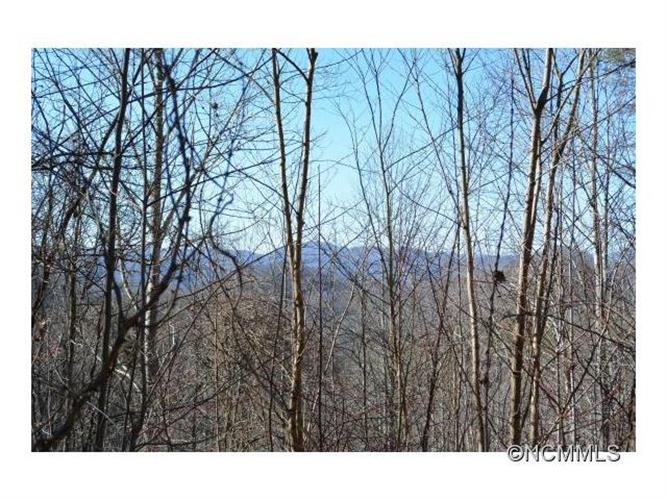 823 High Rock Mountain Road, Marshall, NC 28753