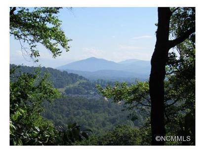 35 Ridge Pine Trail  Arden, NC MLS# NCM554201