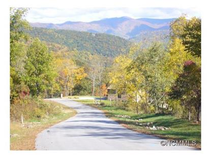 00 LONGSTREET COURT  Weaverville, NC MLS# NCM559053