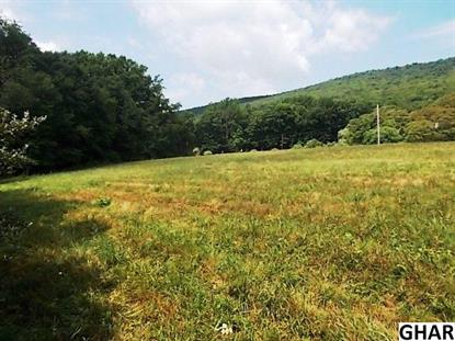 601 Hunters Valley Road Liverpool, PA MLS# 10290262