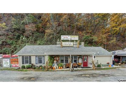 120 Old Trail Road Liverpool, PA MLS# 10294126