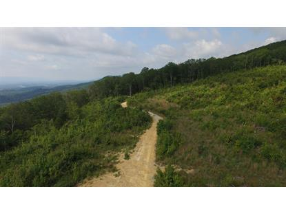 0 Cove Hill Rd Pikeville, TN MLS# 1292760