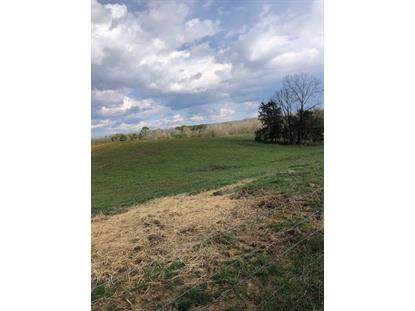 148 County Road 603  Athens, TN MLS# 1297235